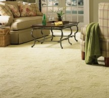 10 Compelling Reasons for Choosing Carpets