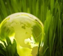 Healthcare Waste Management – A Move Towards a Greener World