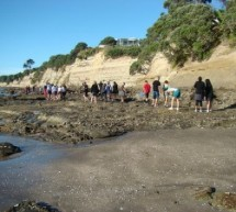 Tips For Teachers: Should You Take Your Elementary Class On A Field Trip?