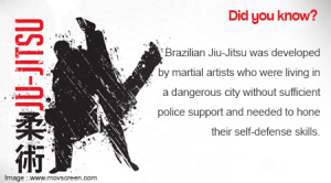 What Is Involved in Brazilian Jiu-Jitsu Training (2)