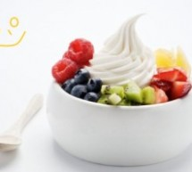 How Can You Make Your Frozen Yogurt Business Fruitful?