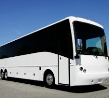 Do You Want, A Suitable Bus Service Supplier?