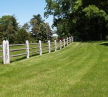 Strong Fences For Four-Legged Investments