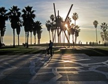 Highlights Of Venice Beach