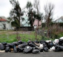 How To Start A Rubbish Removal Business In Sydney?