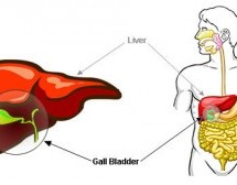 Common Treatments For Bladder Infections