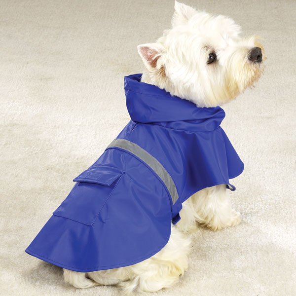 Cheap and Best Rainy Jackets For Dogs or Pets