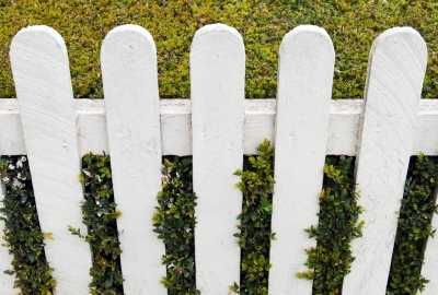 5 Proven Tips To Increase Your Home's Curb Appeal