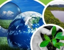 Environmental Awareness Training Will Boost Your Business