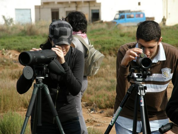 Bird Watching –A Hobby That Gives Your Life A New Dimension