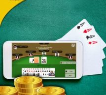 5 Top Facts about Points Rummy
