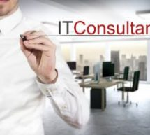 What are the Three Types of Services that IT Consultant James DeVellis Provide